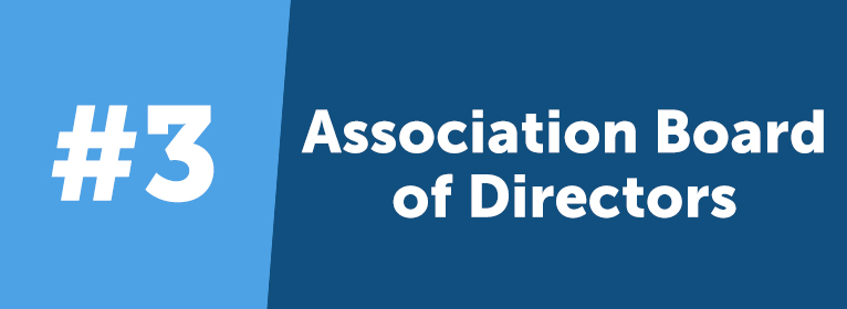 Current standing members that volunteer on the national or a chapter board of directors are given VIP status to thank them for their contribution to the organization.